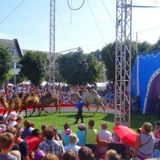 CIRQUE EVENT animation cirque en exterieur fete palc festival village ile de france